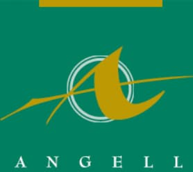 Logo for The Angell Pension Group, Inc.